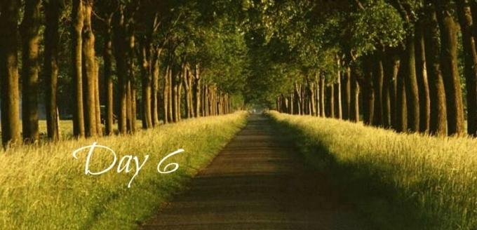 Day 6 - Path
