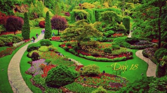 garden-day18-2
