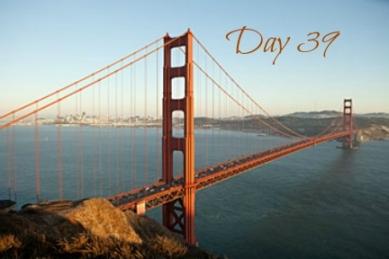 bridge-day39