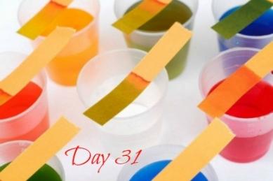 litmustest-day31