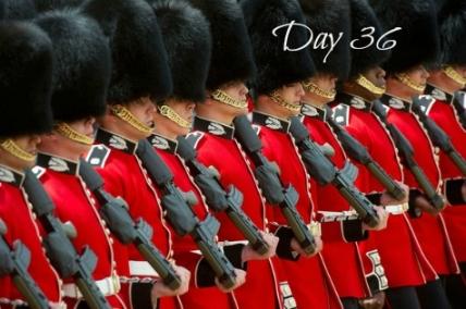 royalguard-day36