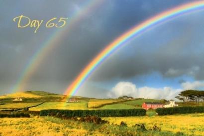 rainbow2-day65