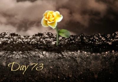 beauty-day73
